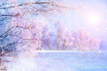 思い出を消されても、恋は消えない?冬に見たい恋愛映画「エターナル・サンシャイン」